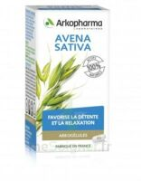Arkogélules Avena Sativa Gélules Fl/45 à STRASBOURG