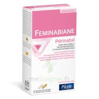 Pileje Feminabiane Périnatal 28 Gélules Blanches Et 28 Gélules Jaunes à STRASBOURG