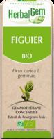 Herbalgem Figuier Macerat Mere Concentre Bio 30 Ml à STRASBOURG