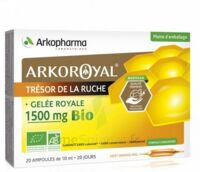Arkoroyal Gelée Royale Bio 1500 Mg Solution Buvable 20 Ampoules/10ml à STRASBOURG