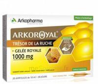 Arkoroyal Gelée Royale 1000 Mg Solution Buvable 20 Ampoules/10ml à STRASBOURG