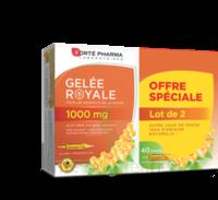 Forte Pharma Gelée Royale 1000 Mg Solution Buvable 2*b/20 Ampoules/10ml à STRASBOURG